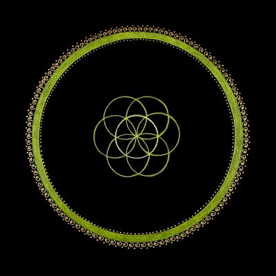 10_Seed of Life - Solar Plexus