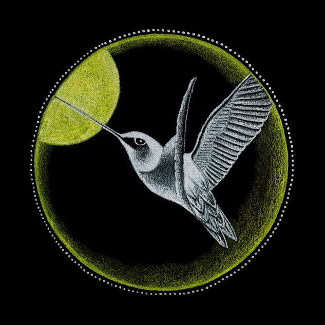 3_Solar Plexus Chakra - Hummingbird