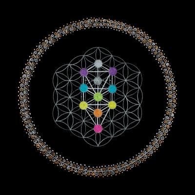 43_Soul Journey - Root